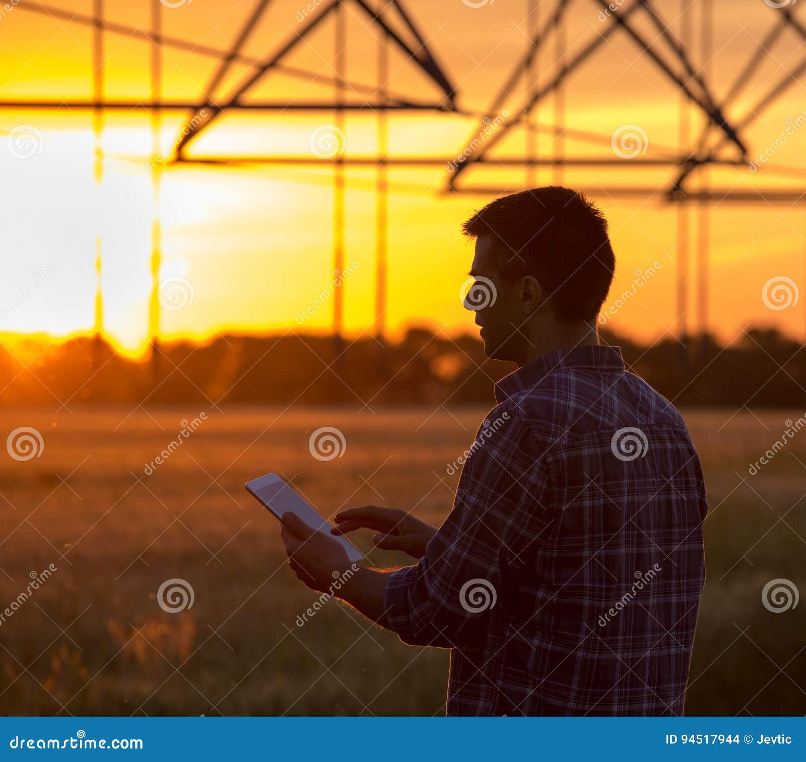 Rolnik z pastylką w polu przy zmierzchem