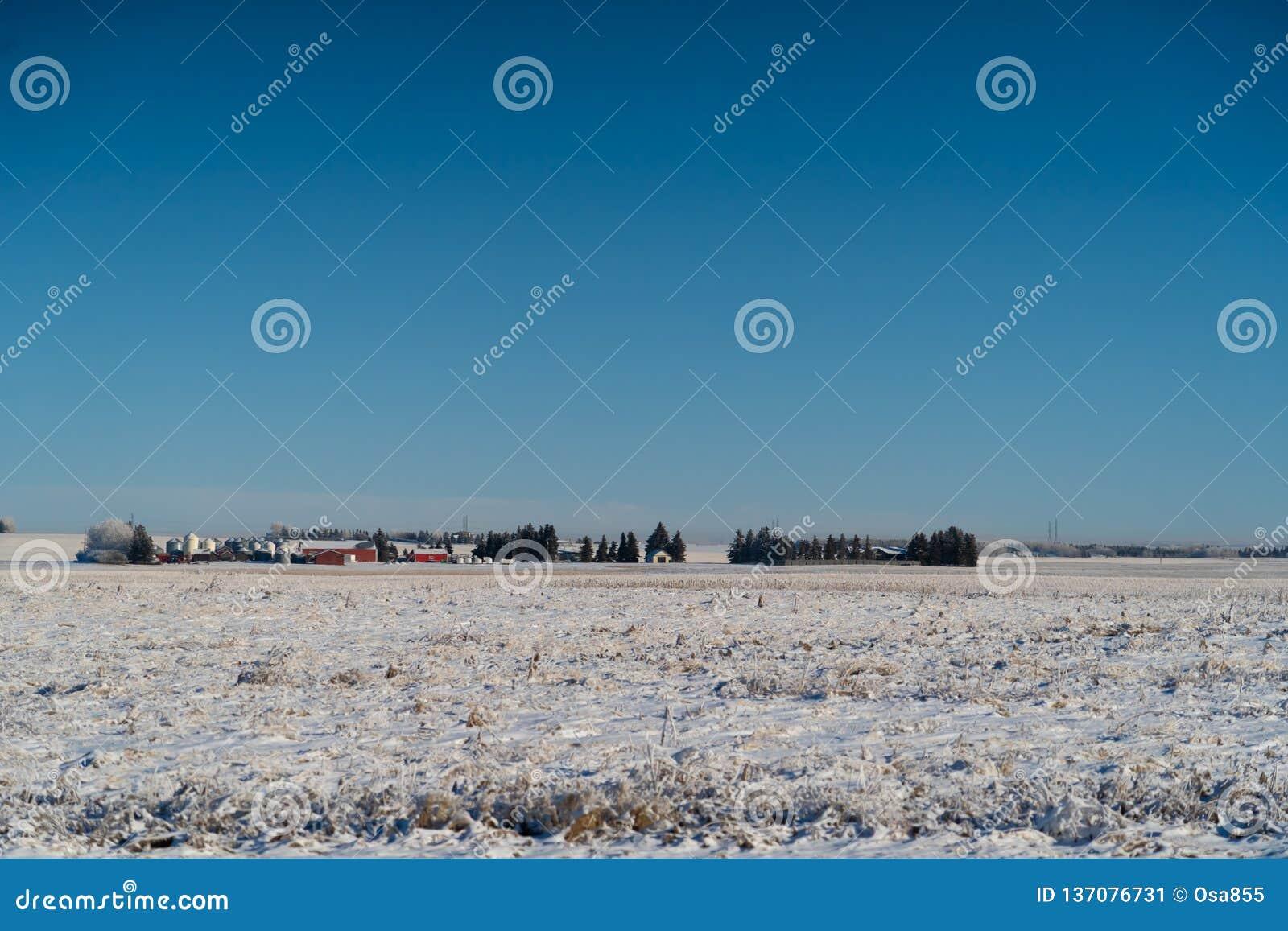 Rolny dom i silos z śniegi zakrywającymi polami