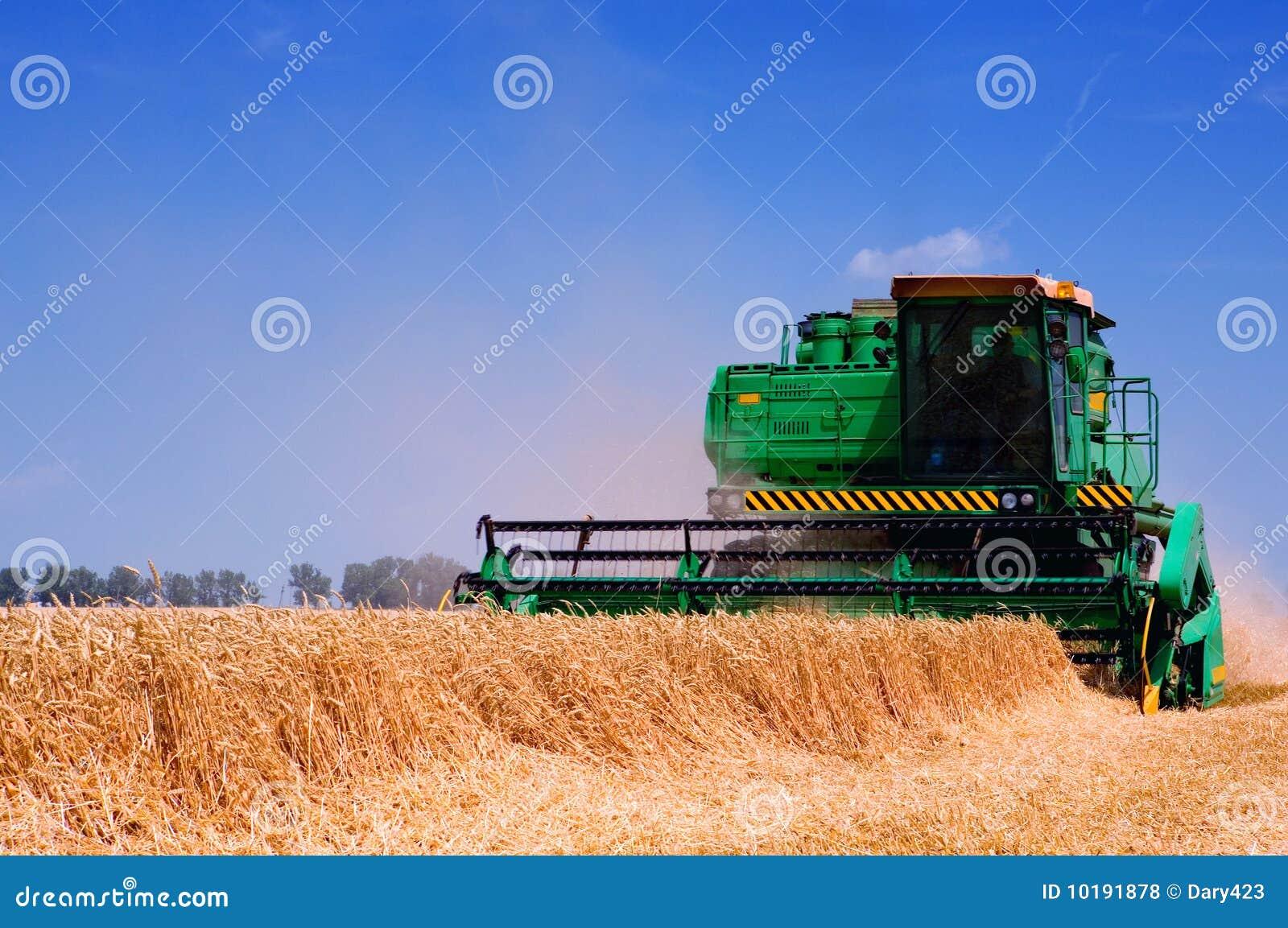 Rolny wyposażenie żniwiarz