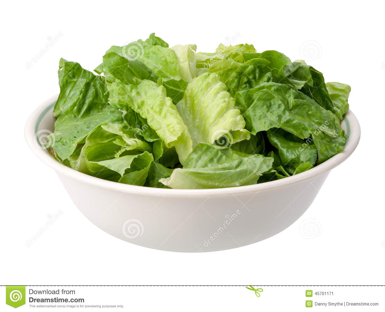 Romaine Salad Bowl isolated on a white background. The isolation is on ...