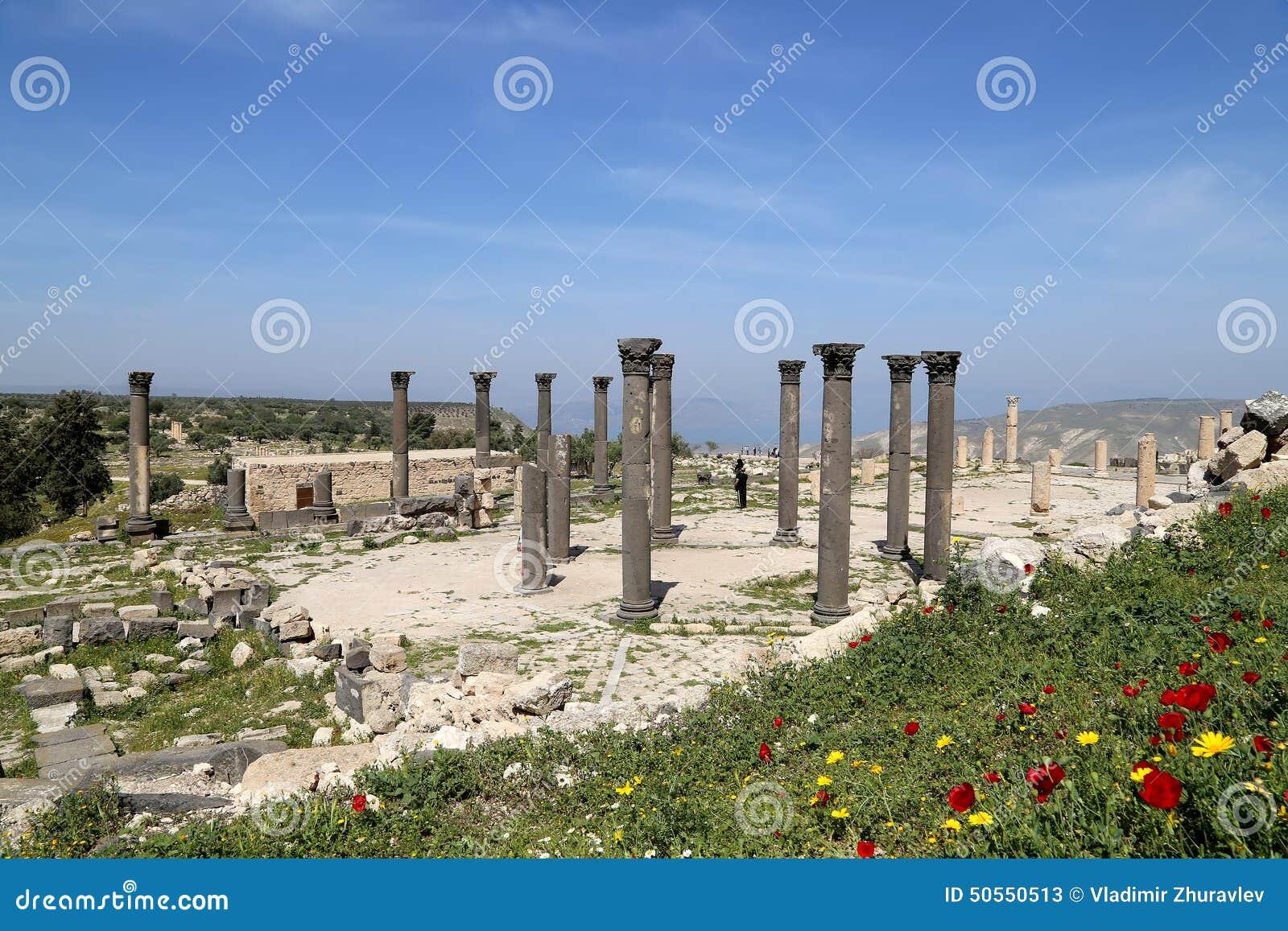 Roman Corinthian Columns In Umm Qais Umm Qays Is A