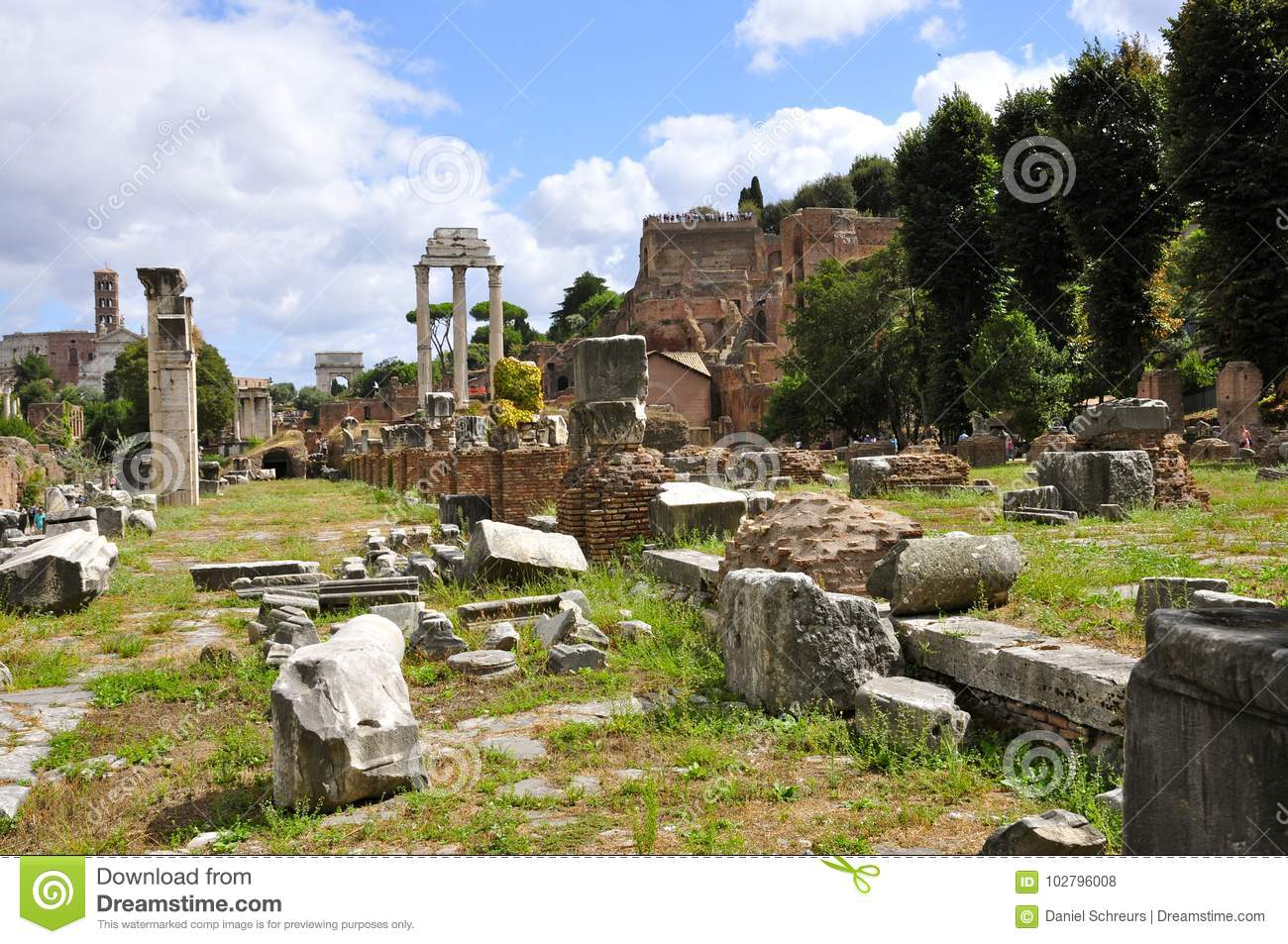 Roman Forum North