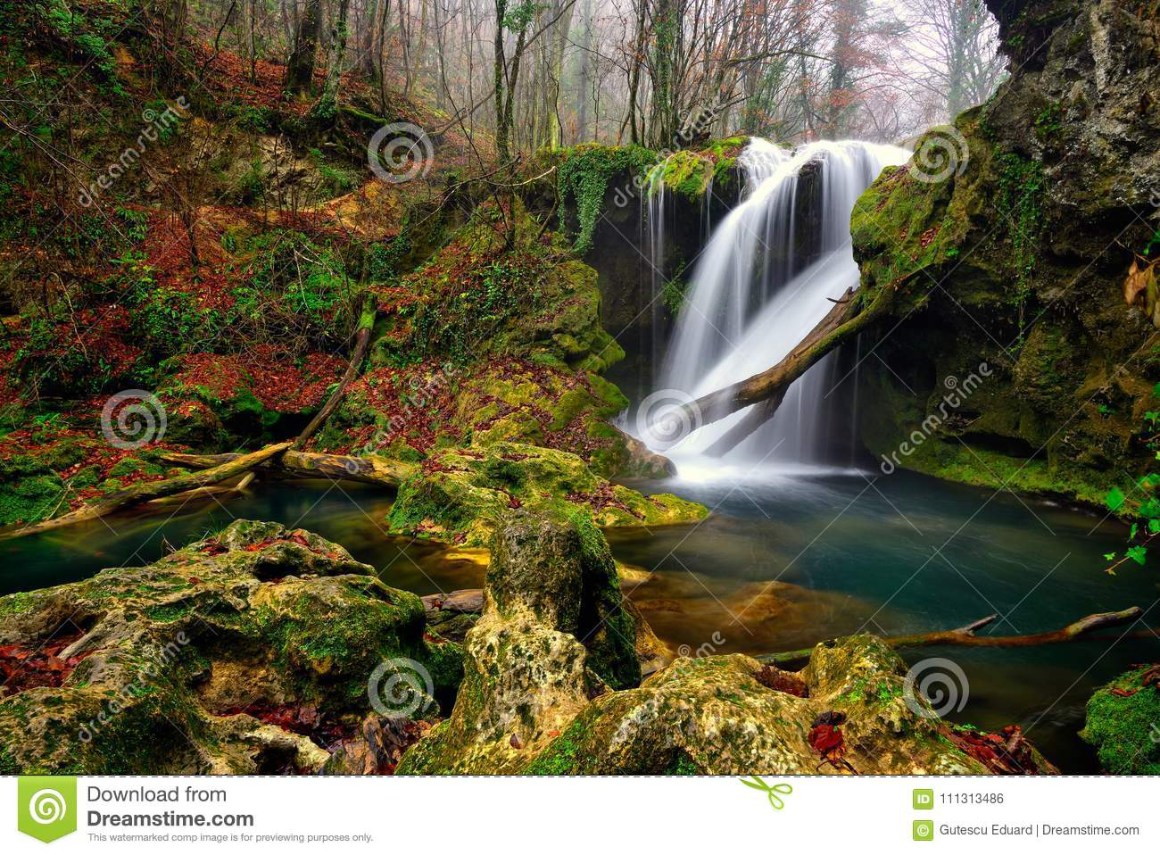 Romania beautiful landscape waterfall in the forest and natural Cheile Nerei natural park