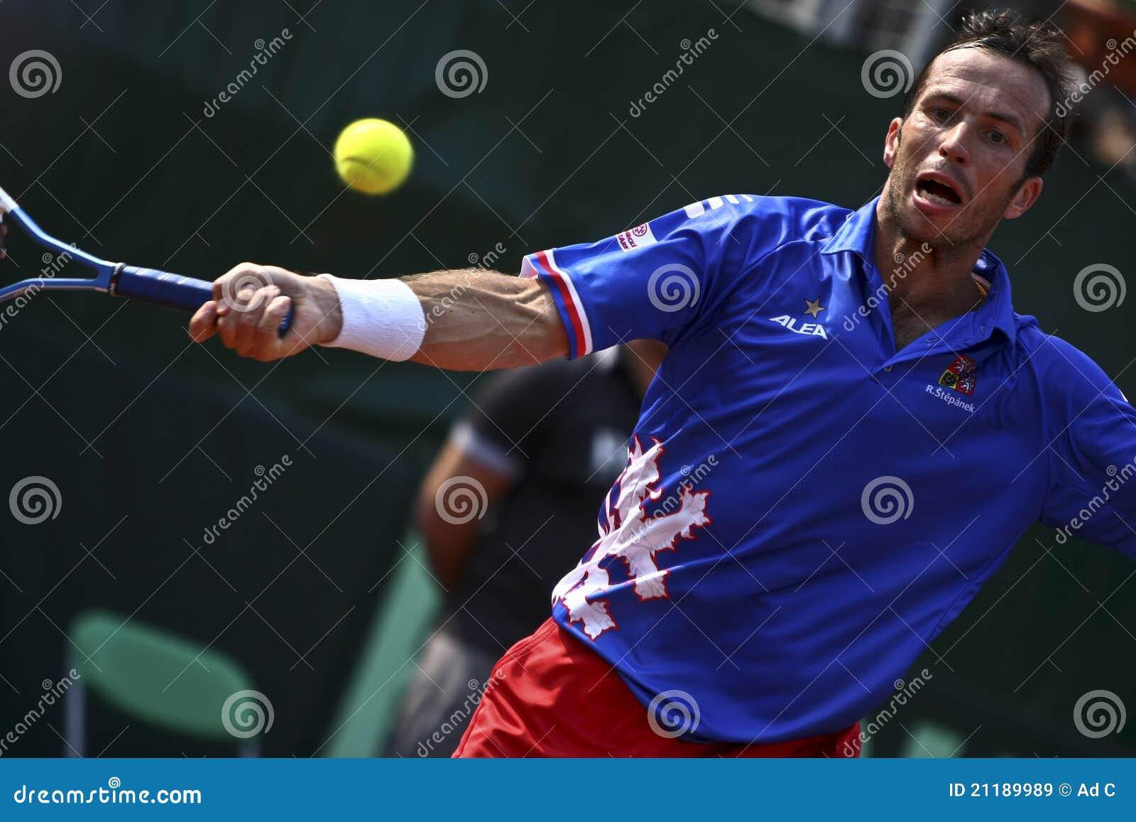 Romania-Czech Republic, Davis Cup 2011