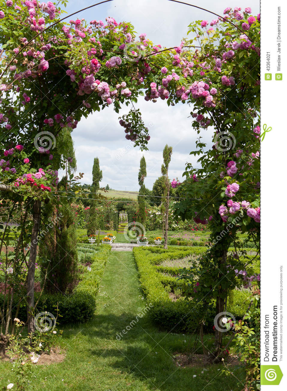 The romantic alley-way in the pergola from roses