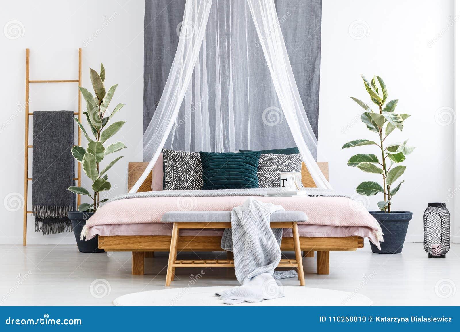 romantic bedroom interior main bedroom romantic bedroom interior with plants bedroom interior with plants stock photo image of