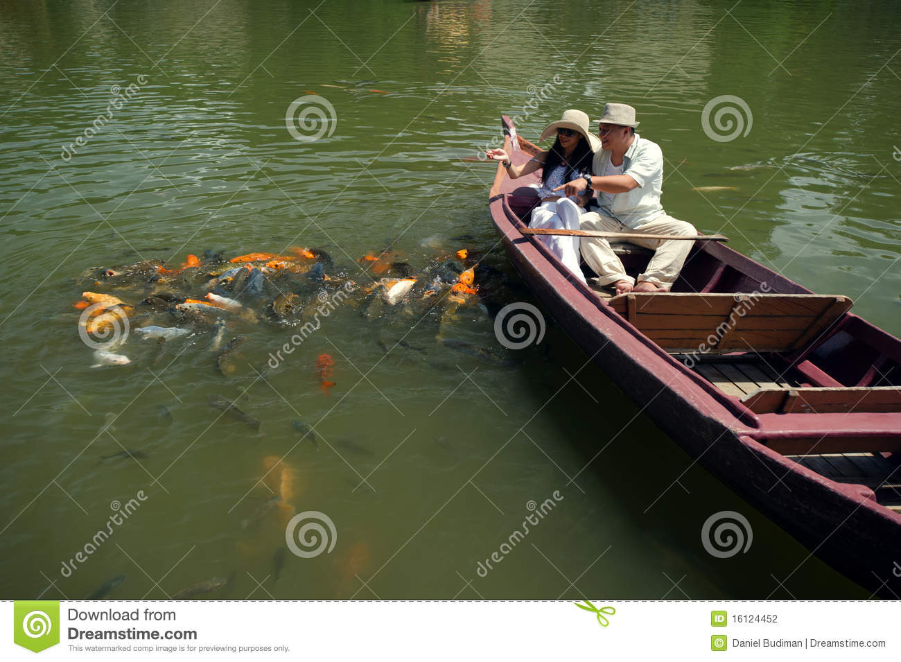 Romantic couple feeding goldfish in pond stock photography for Goldfish pond designs