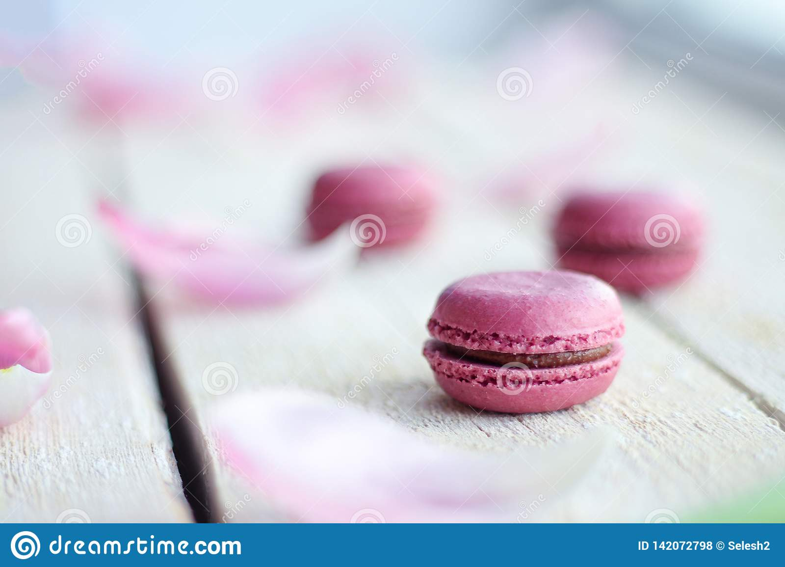 Romantic delicate composition with pink flowers and macaroon cakes.