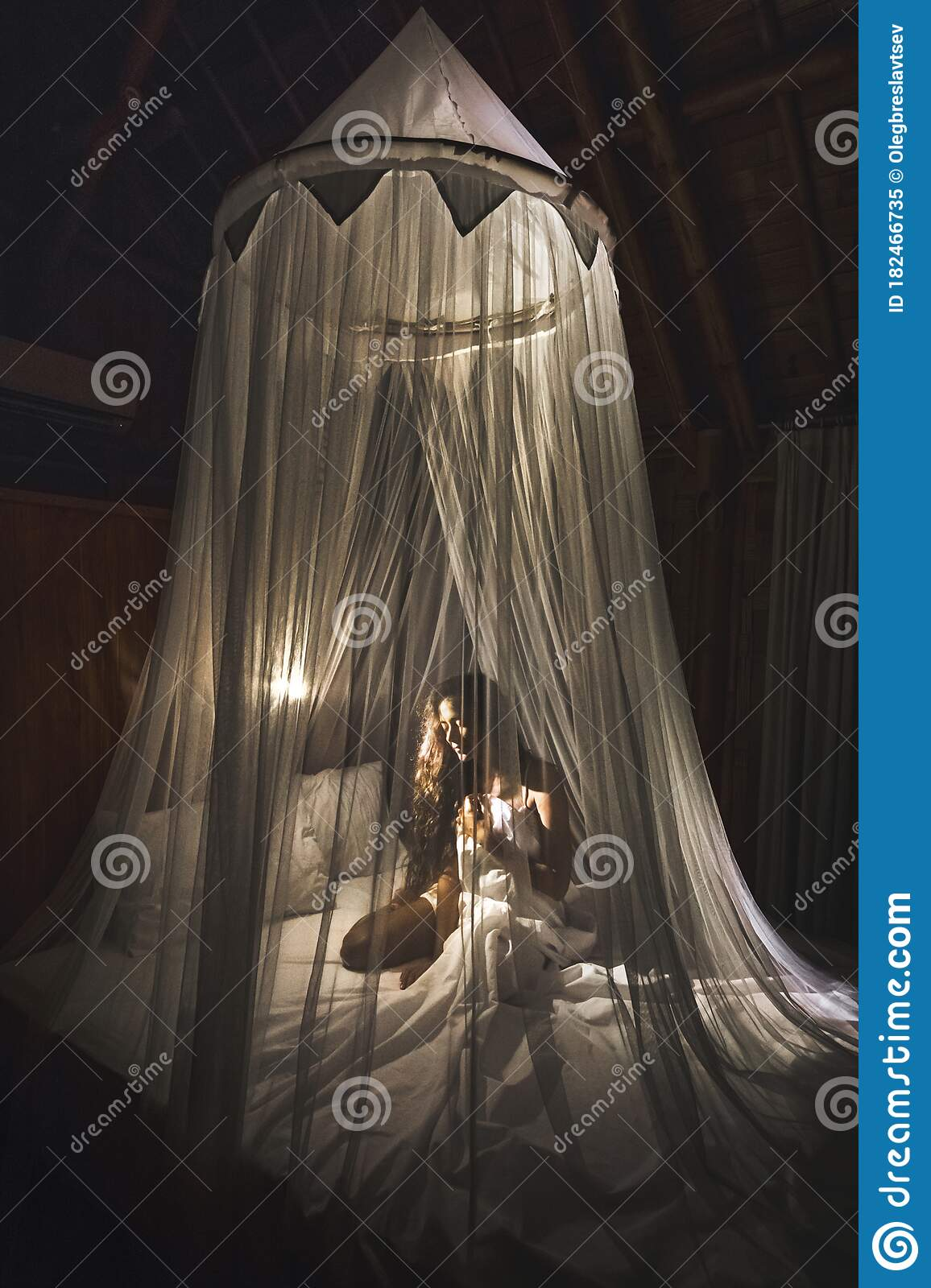 203 Canopy Bedroom Romantic Photos Free Royalty Free Stock Photos From Dreamstime