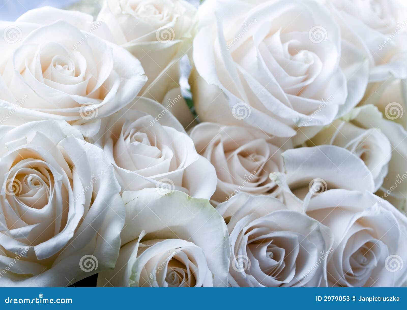 Romantic Flowers Stock Photos Image 2979053