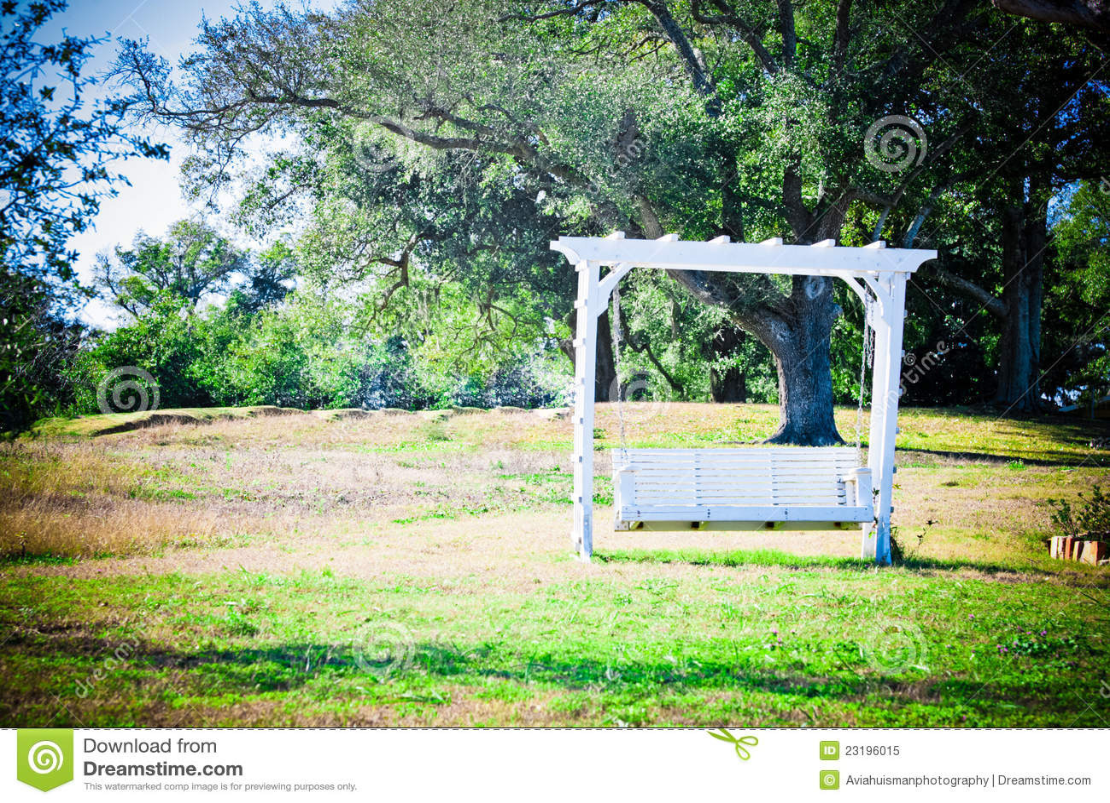 Romantic Garden Bench Swing Stock Image Image Of