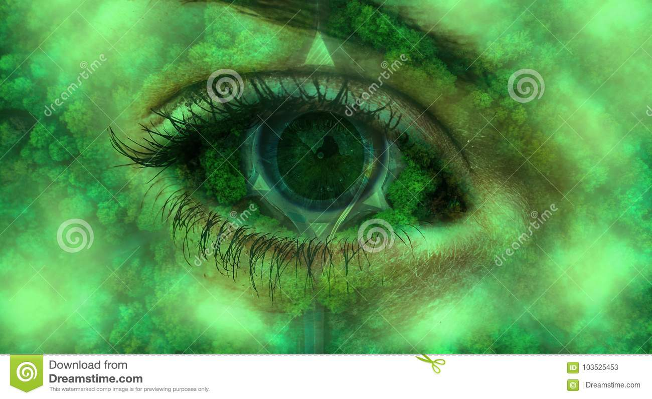 Romantic Image Eye Of Nature Full Of Trees Stock