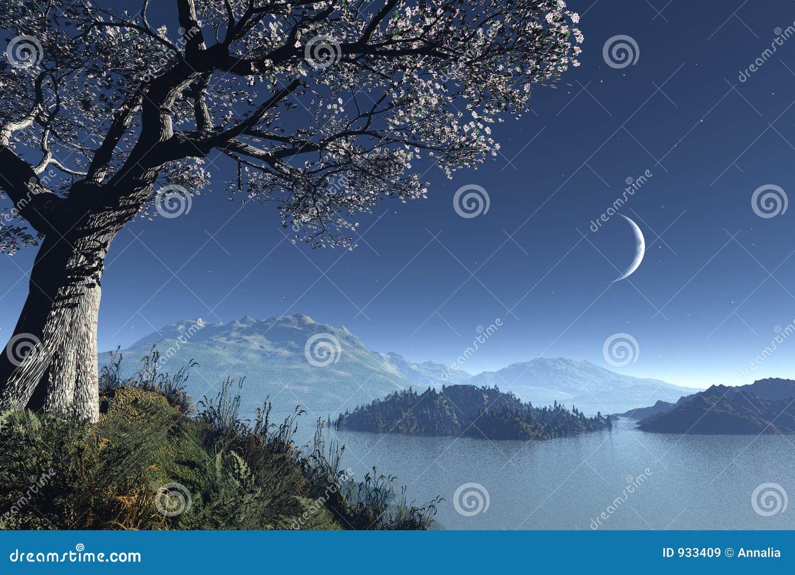 Romantic night landscape