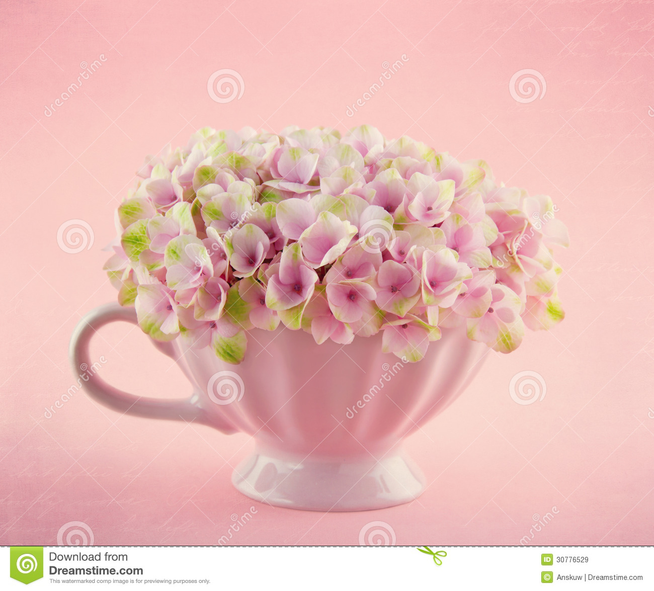 Romantic Pink Hydrangea Flowers In A Mug Stock Image Of Vintage Story Flower Shabby Rose 3