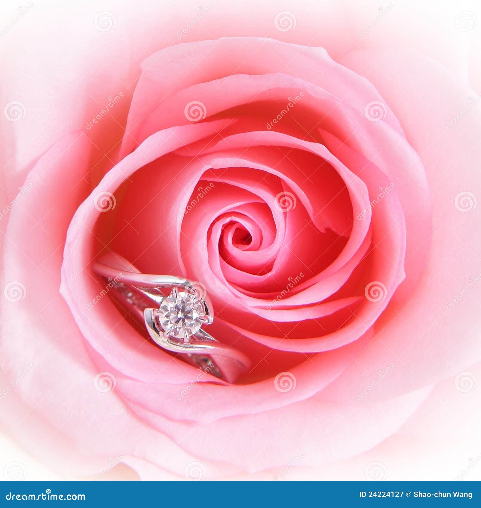 Romantic Pink Rose Diamond Wedding Ring Stock Photos - 661 Images