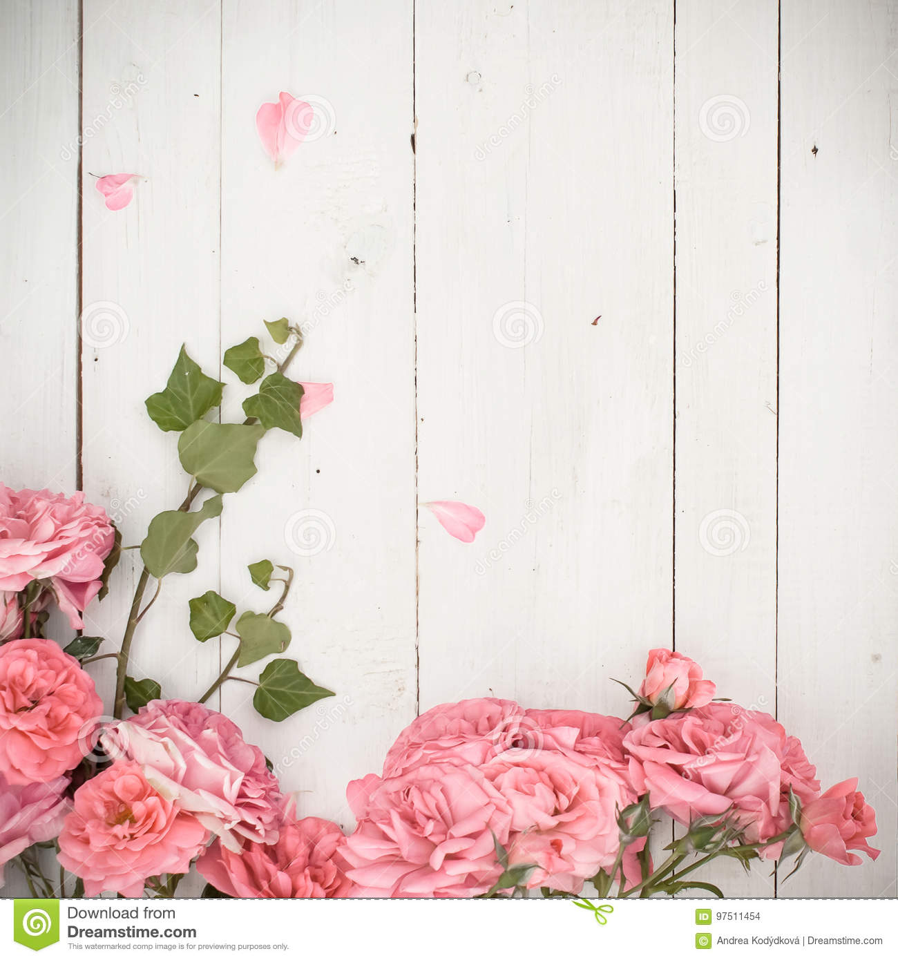 Romantic pink roses and branches of ivy on white wooden background