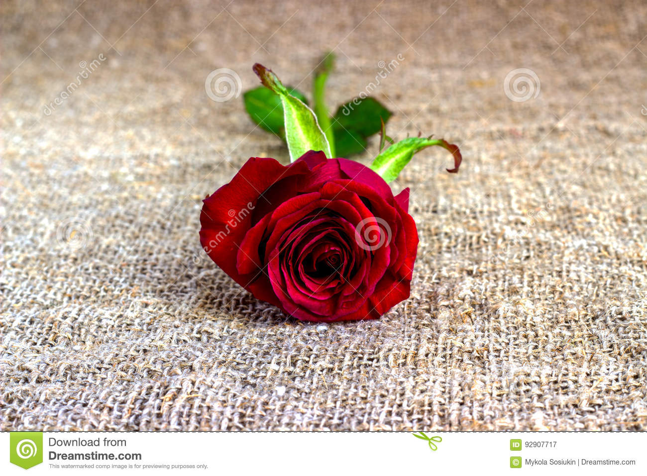 Romantic Red Rose Backgrounds, Mothers Day, Wedding Invitation ...