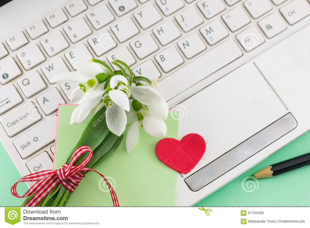 Romantic snowdrops bouquet and a laptop