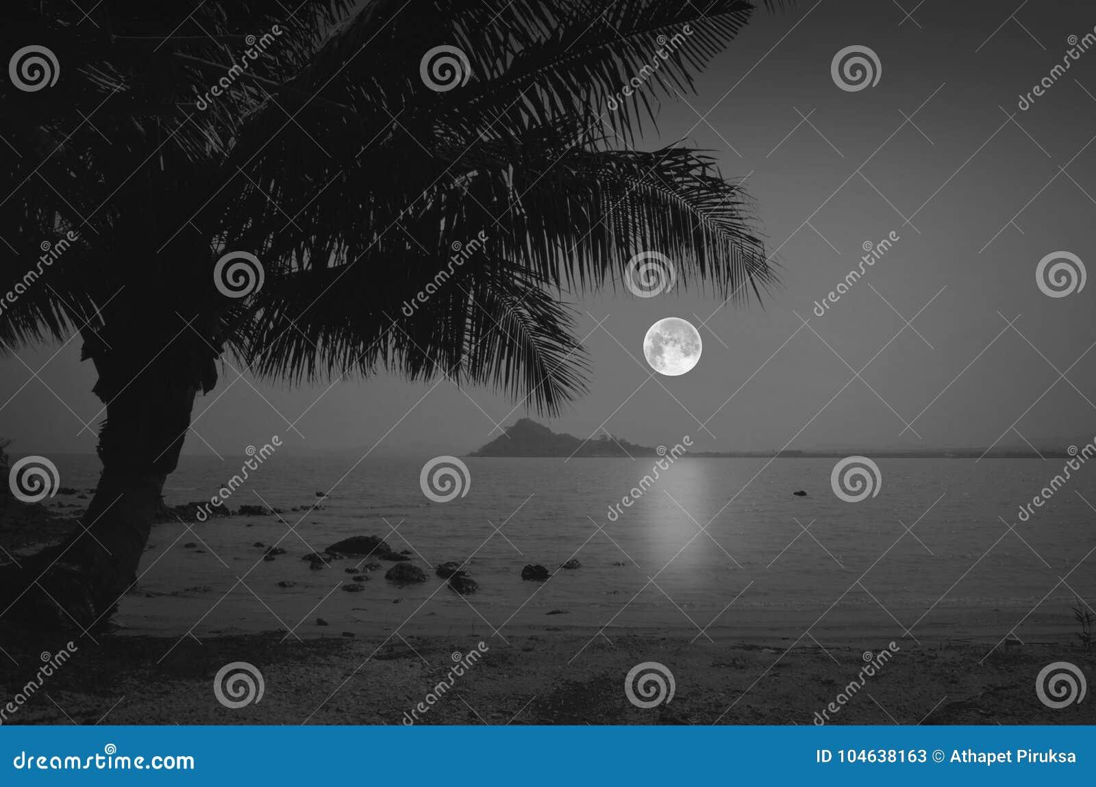Romantisch strand met volle maan in de avond