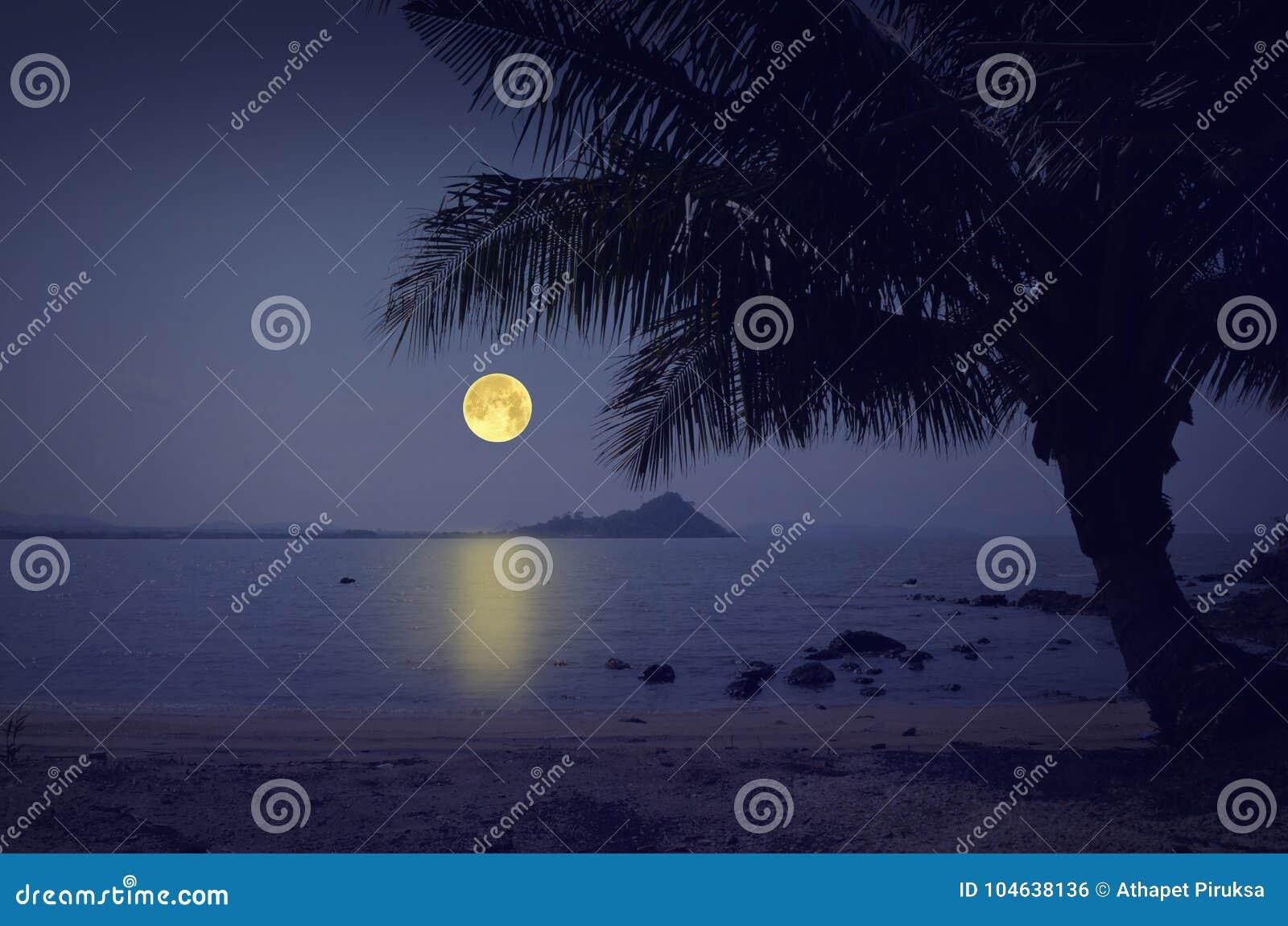 Romantische nacht over eenzaam strand
