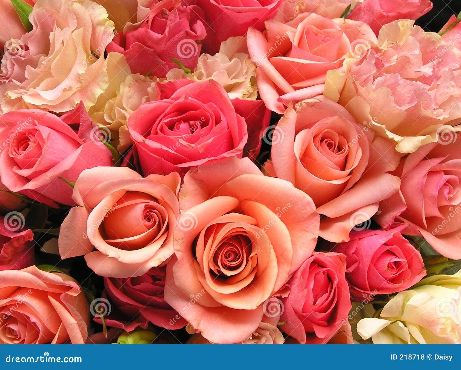 Romantische roze bloemen