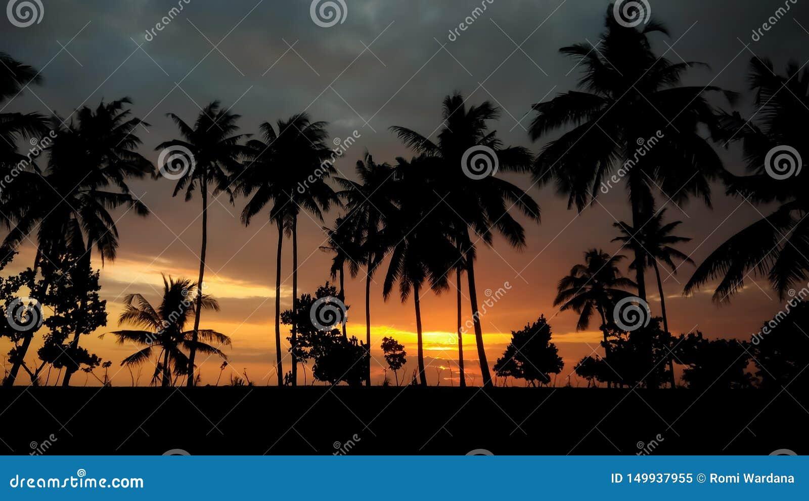 Romantische zonsondergang met silhouet