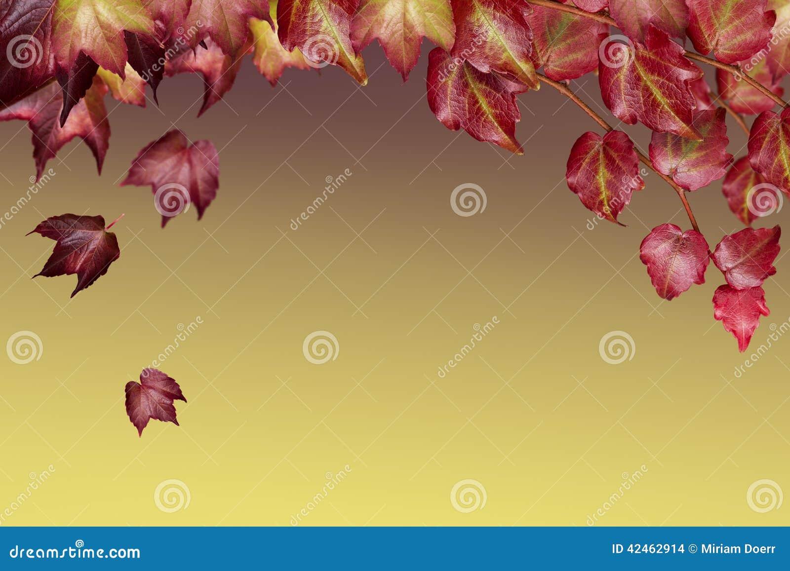 Romantischer Hintergrund mit Blättern