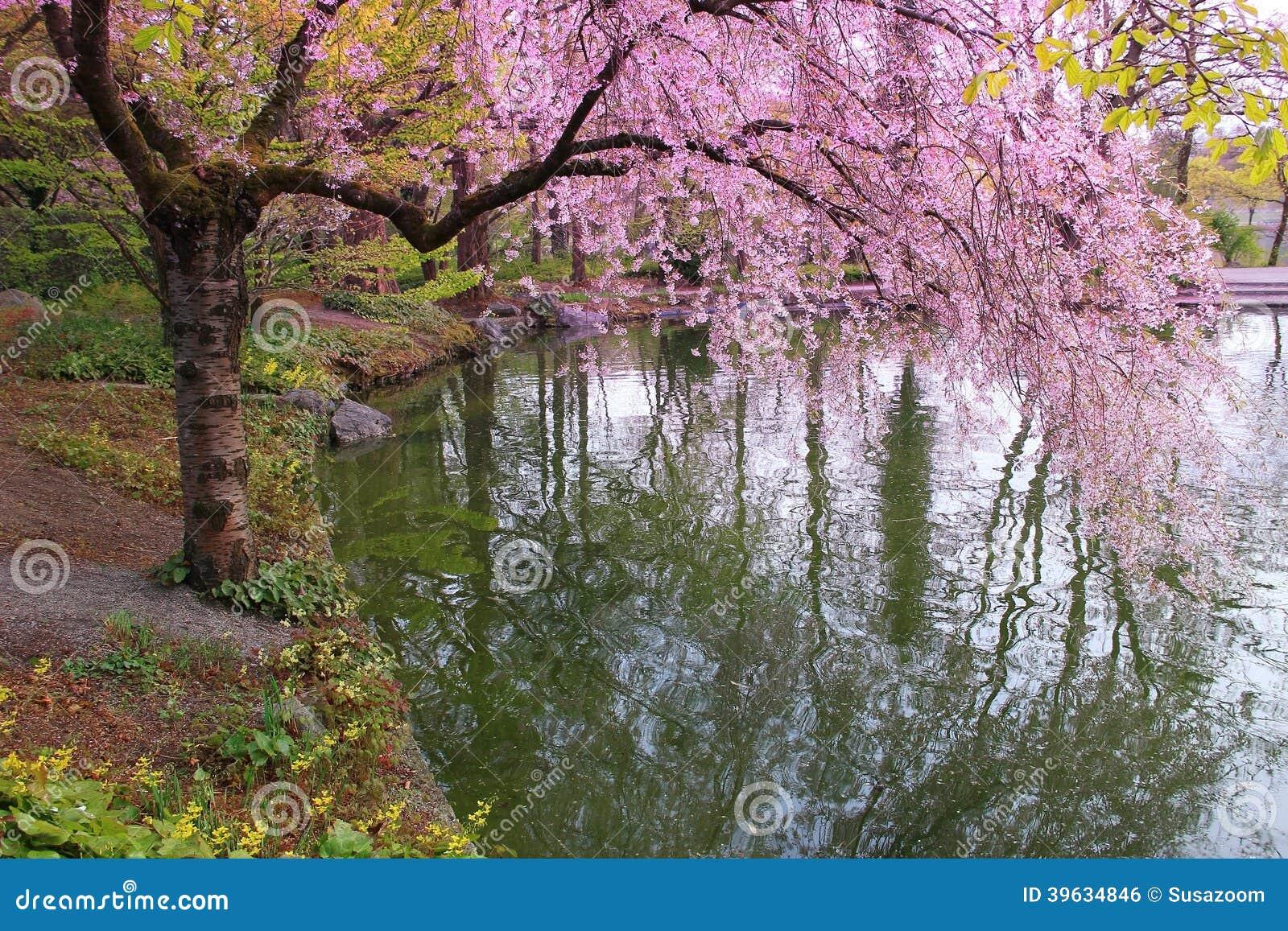 Romantischer Japanischer Garten Stockfoto - Bild: 39634846 Ein Romantischer Garten