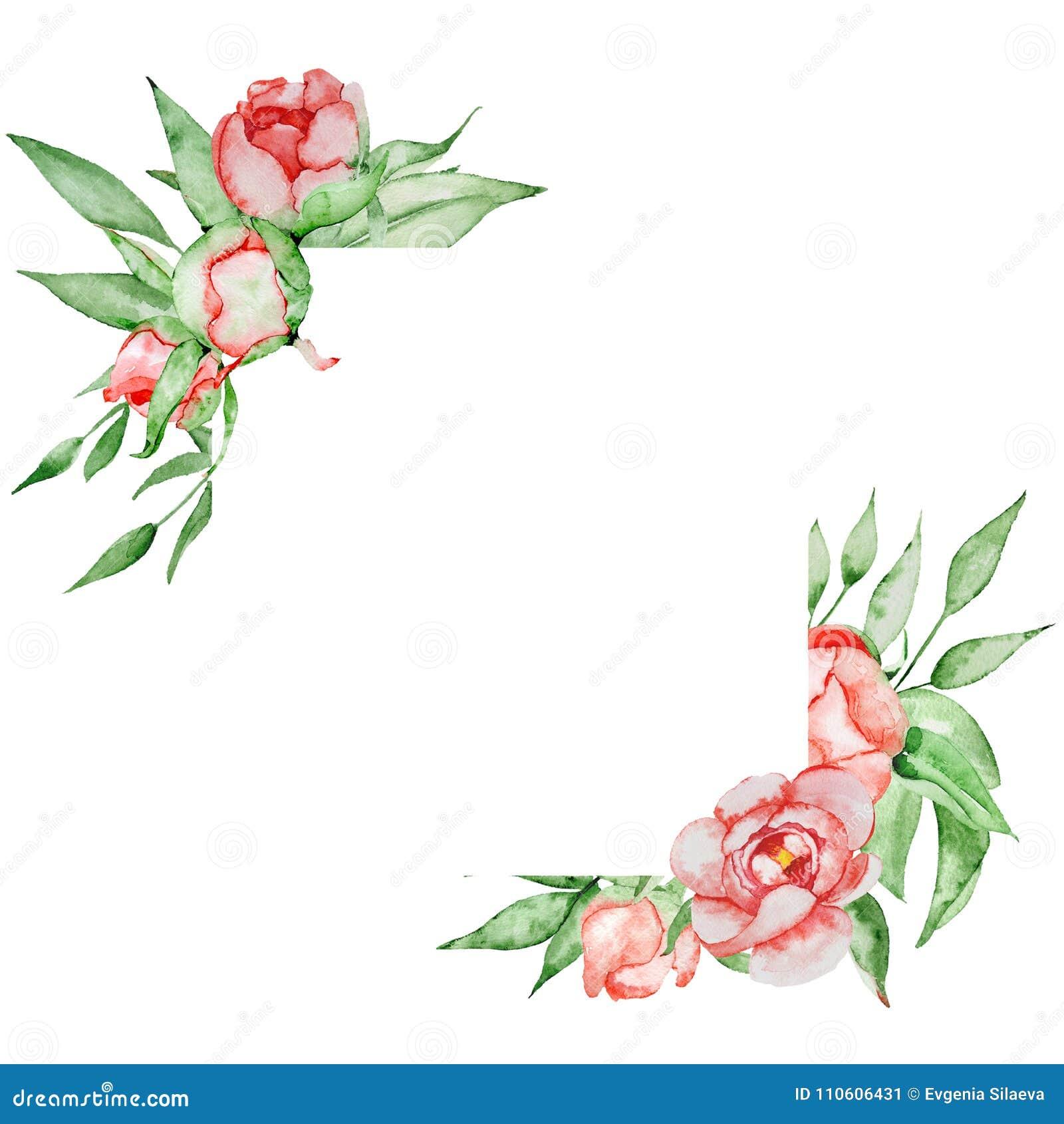 Romantischer Rahmen Mit Blumen Kartenschablone Aquarellpfingstrosen ...