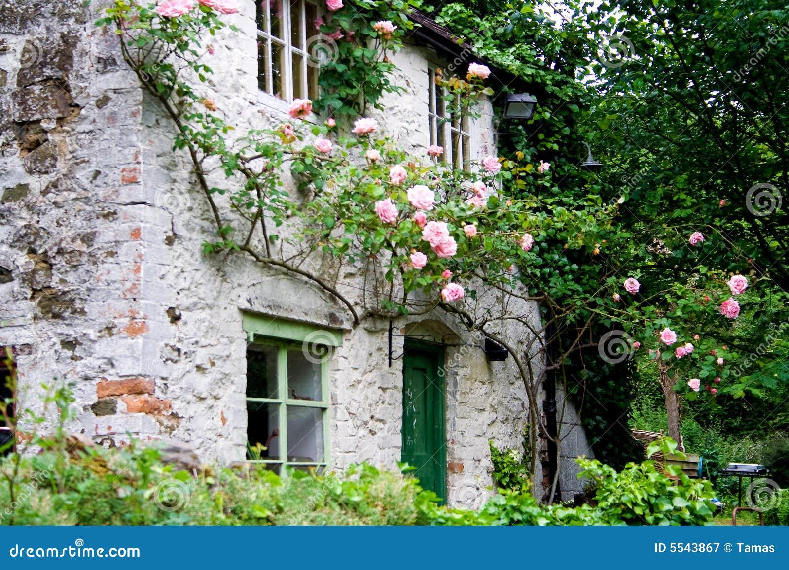 romantisches haus mit rosen stockbild bild 5543867. Black Bedroom Furniture Sets. Home Design Ideas