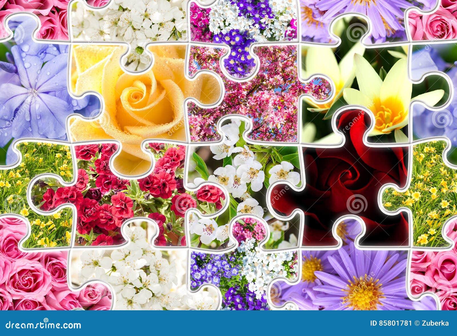 Rompecabezas inconsútil de la colección de la primavera de las flores