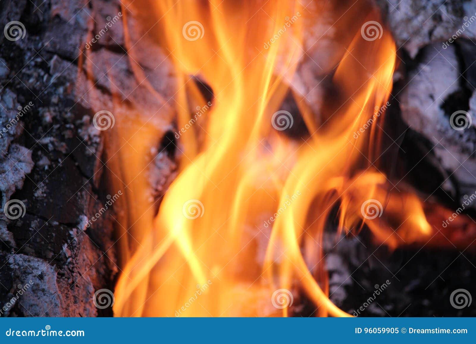 Rondins brûlants avec les flammes nues