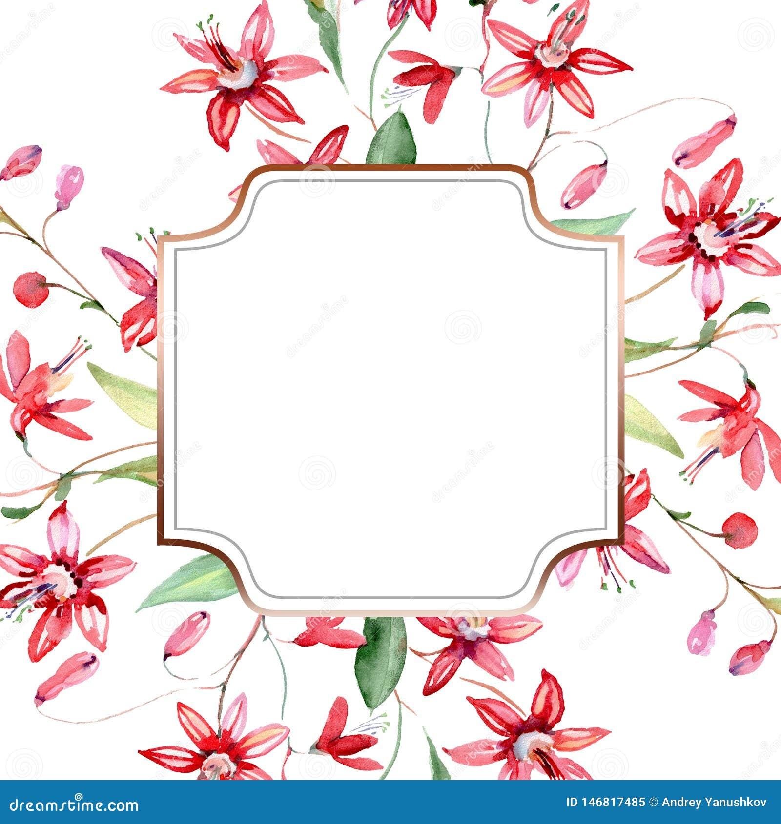 Rood bloemen botanisch bloemenboeket Waterverf achtergrondillustratiereeks Het ornamentvierkant van de kadergrens
