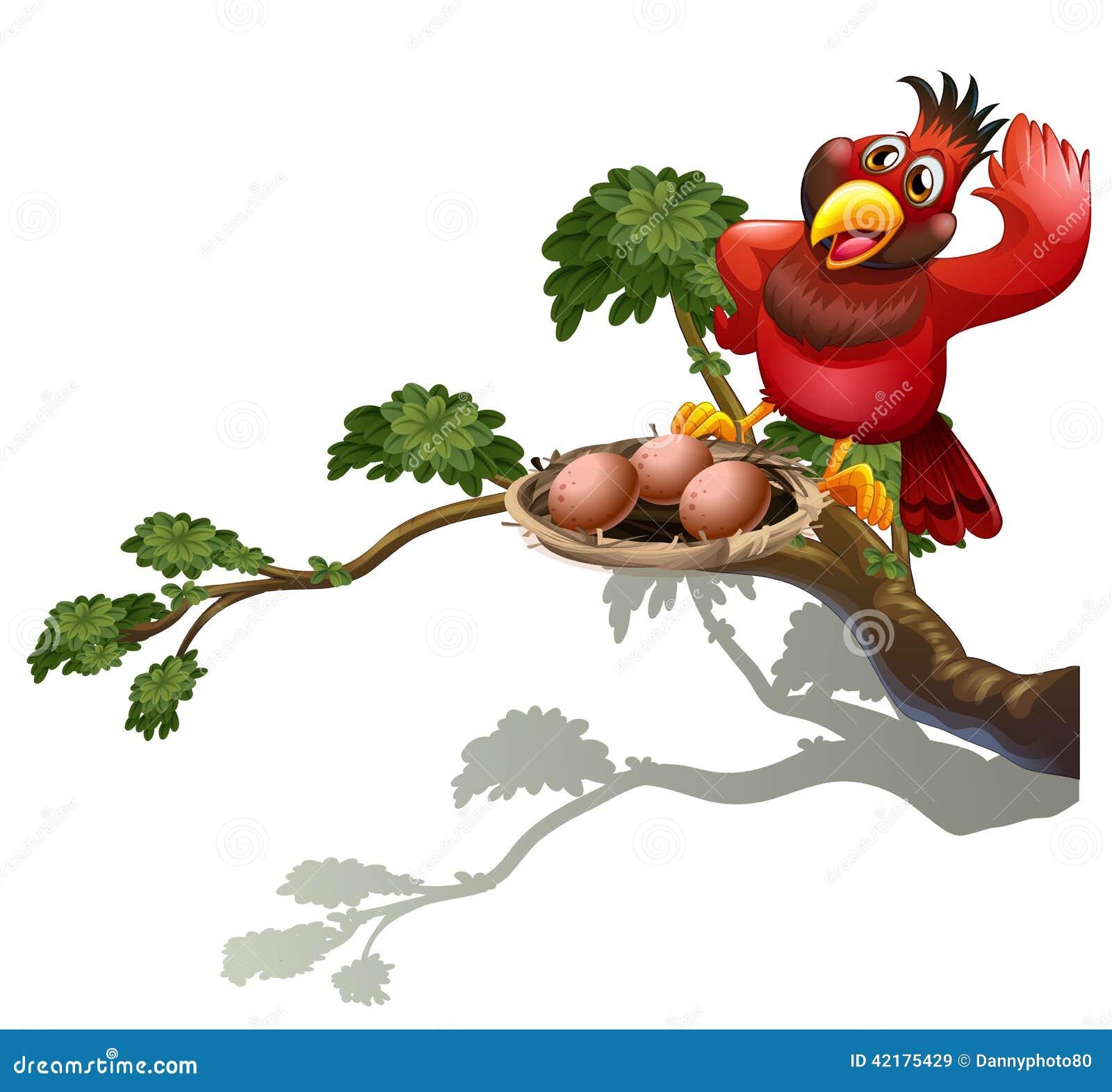 Rood het vogelwaarnemings nest
