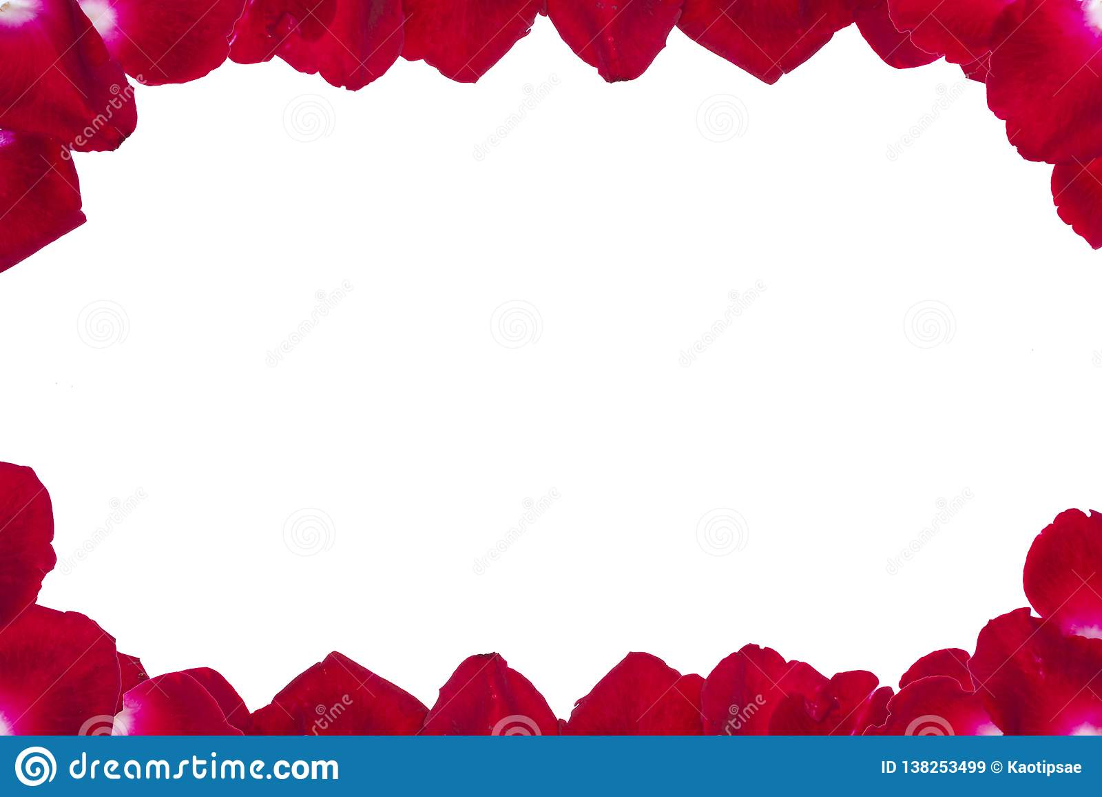 Rood nam bloemblaadjes op witte achtergrond toe