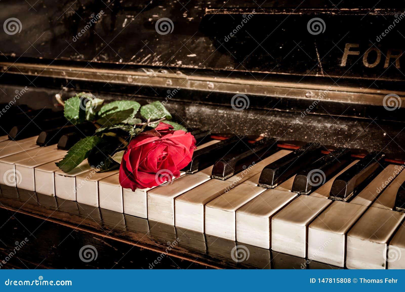 Rood nam en de piano toe