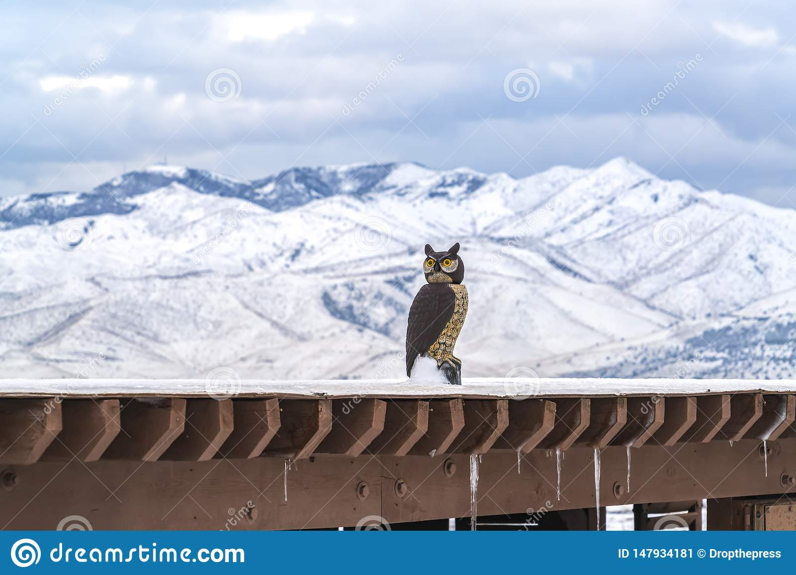 Roof Of A Building Coated With Snow With An Owl Sculpture