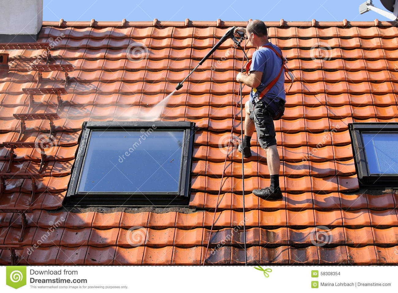 roof cleaning business plan