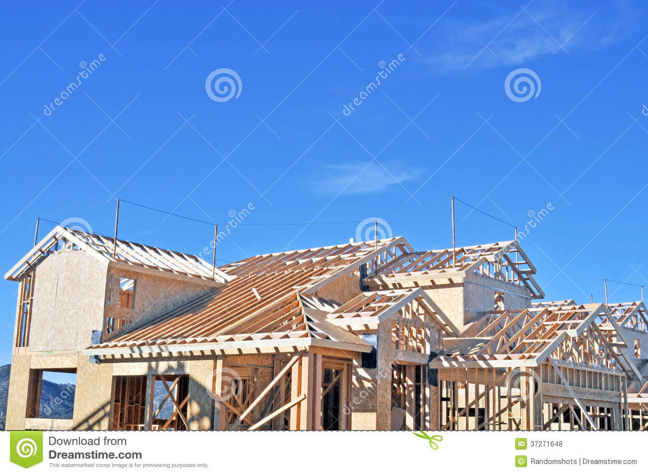 Carpenter Building Codes