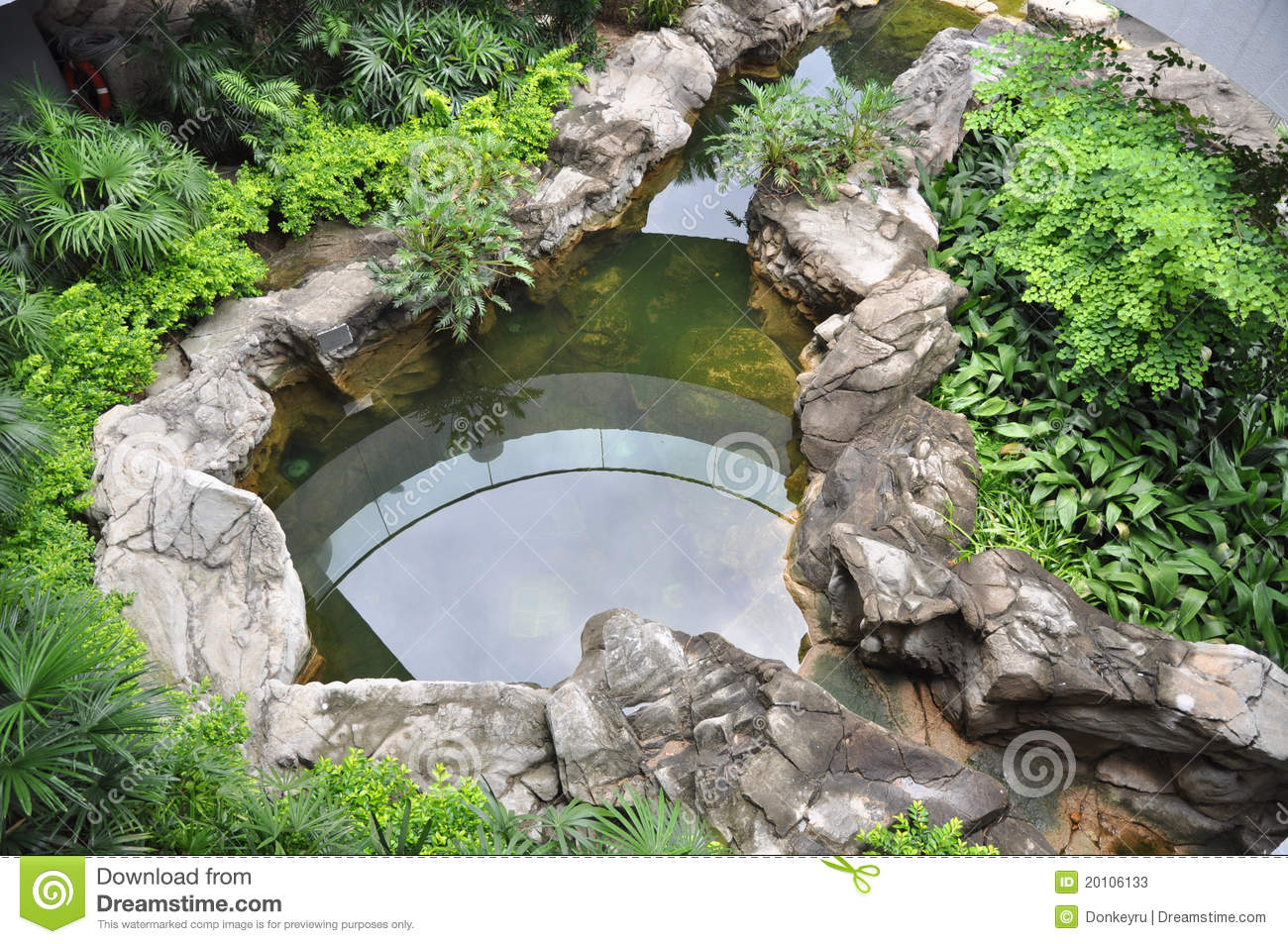 Roof Garden With Fish Pond Stock Image Image Of Garden