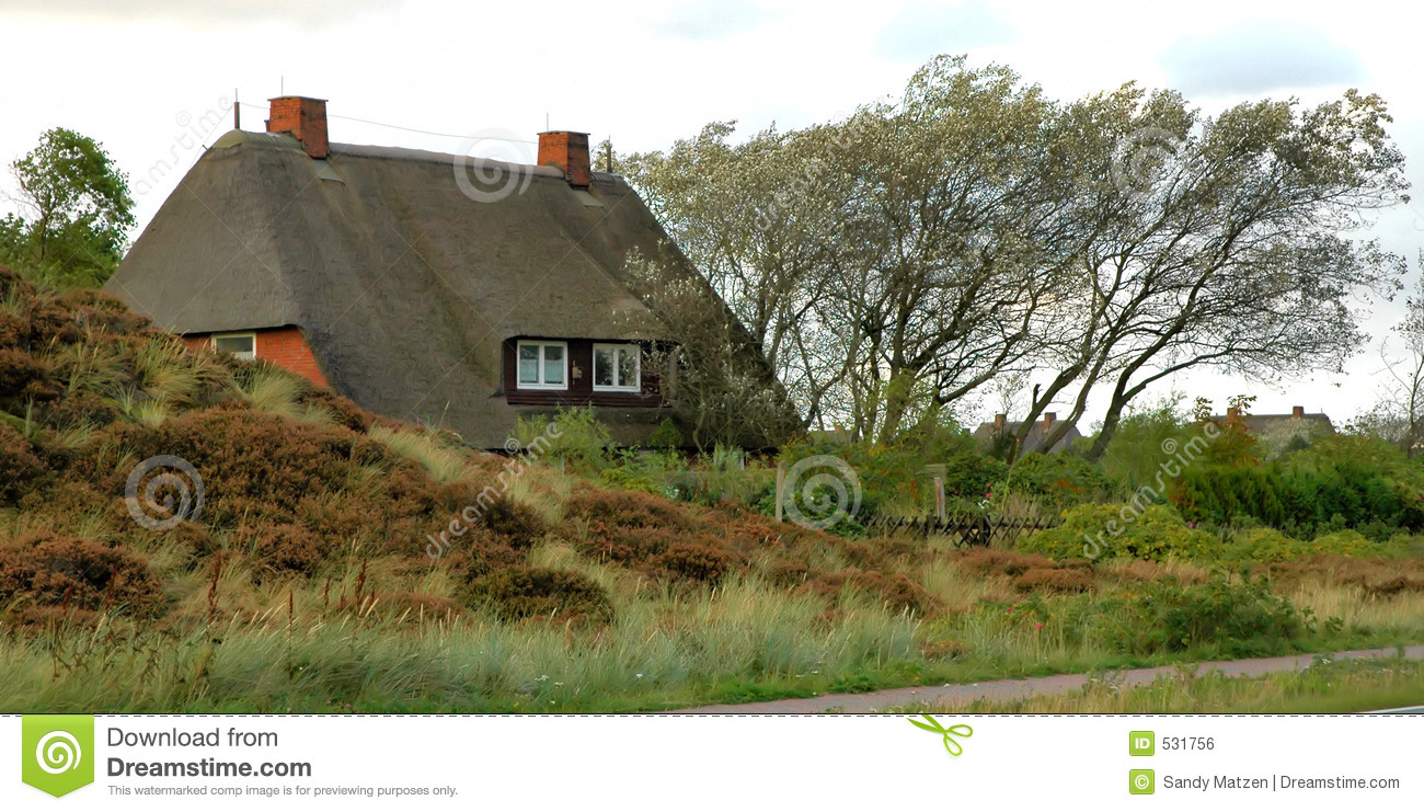 Roof thatched Cottage