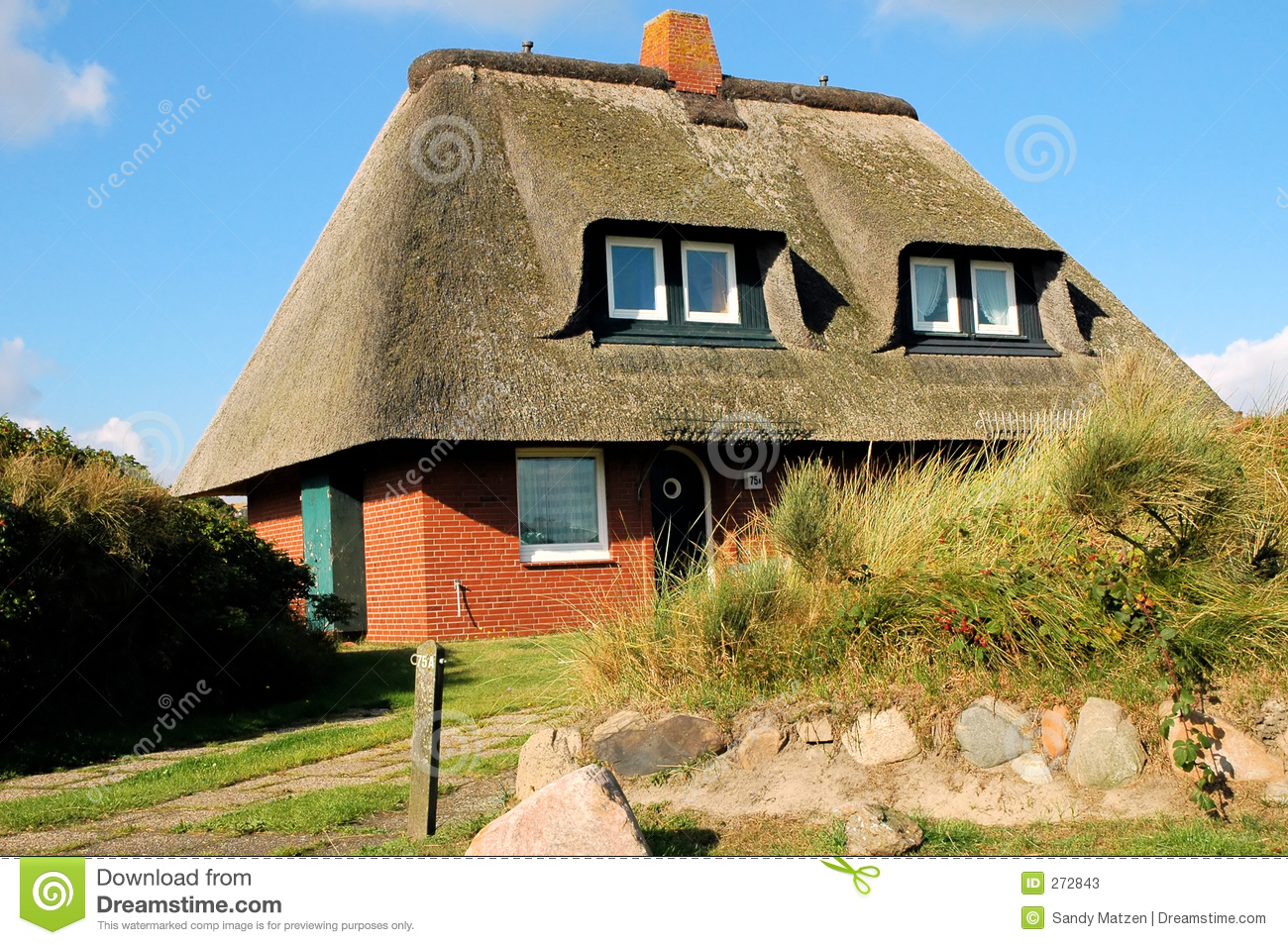 Roof thatched house2