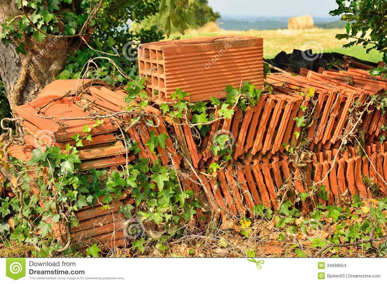 Stock Images Roof Tiles Stacked Garden Ivy Weeds Image34698654 furthermore Garden Room Specifications furthermore 2016 01 01 archive in addition digpla besides Mansard. on metal roofing styles
