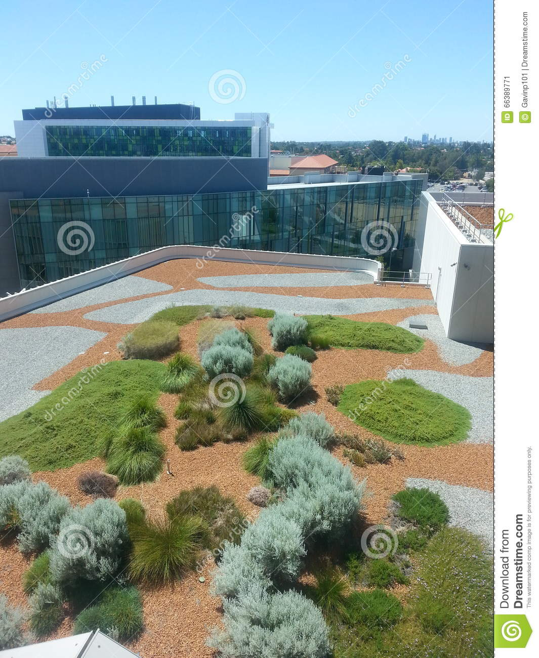 Roof Top Garden At Fiona Stanley Hospital Perth Stock Photo - Image 66389771