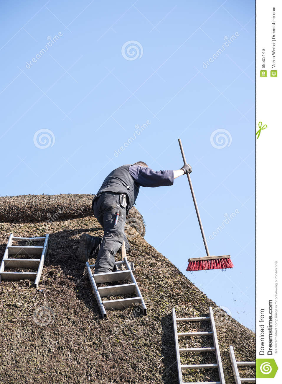 Roofer With Ladders On A Thatched Roof To Remove Moss And