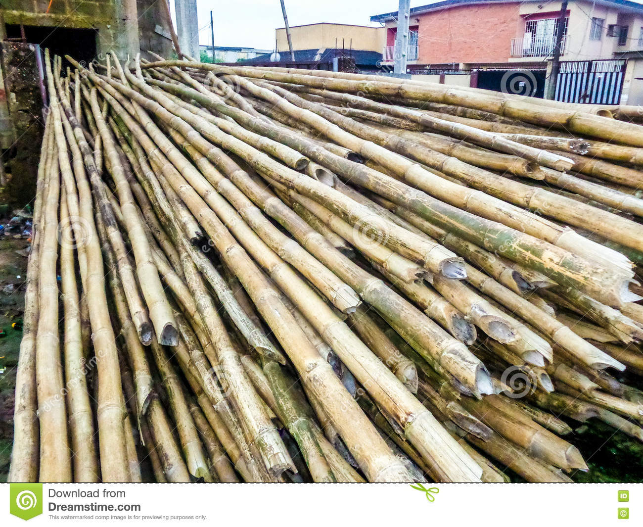 Beautiful Roofing Bamboo Woods