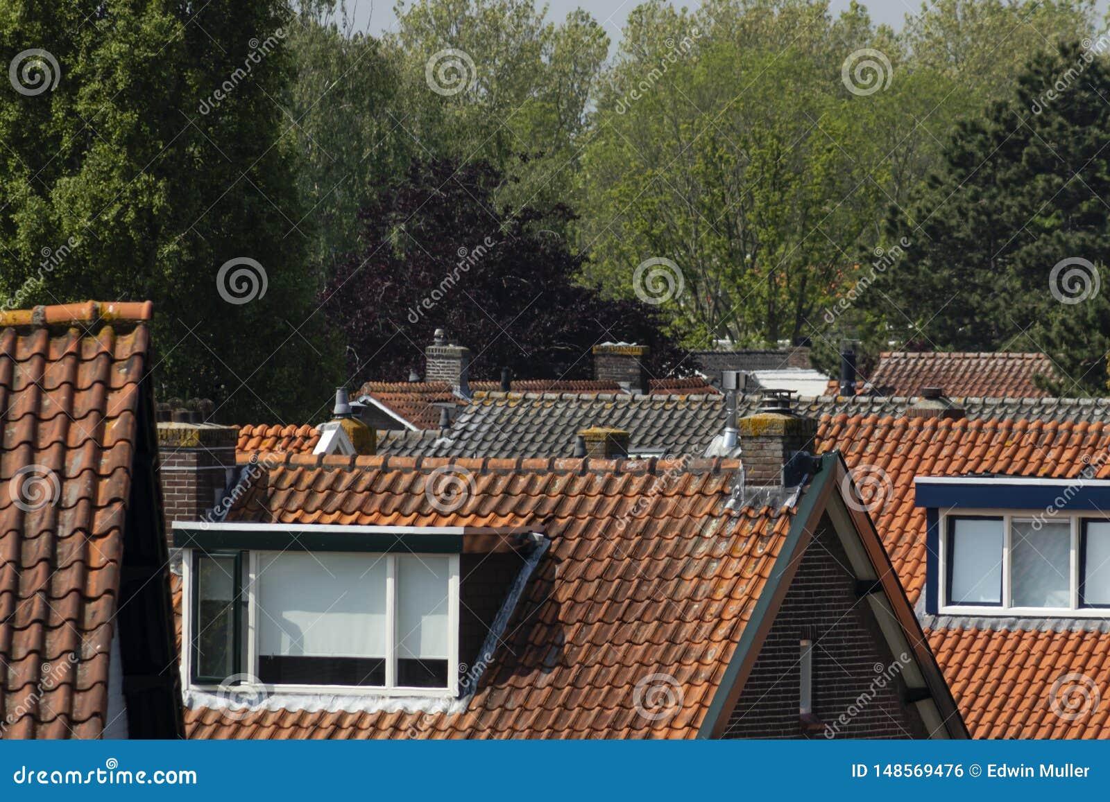 Roofscape tejó los tejados Barendrecht Países Bajos