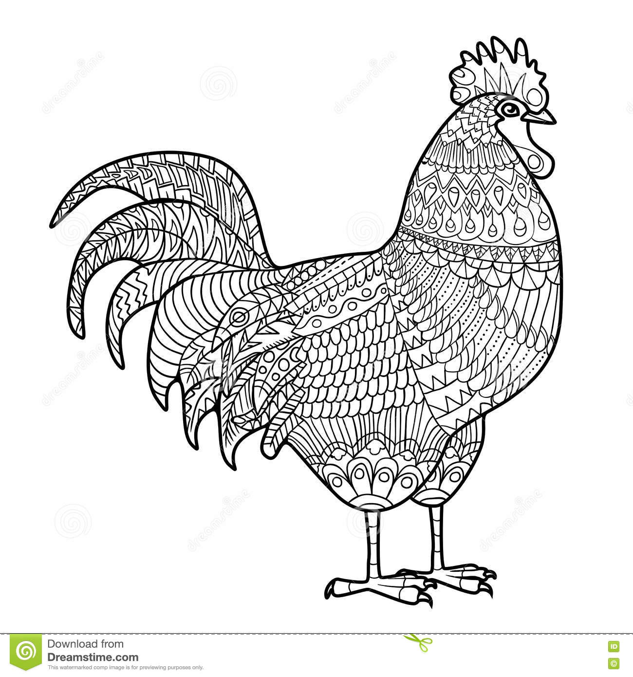 rooster chicken domestic farmer bird hand drawn for anti stress