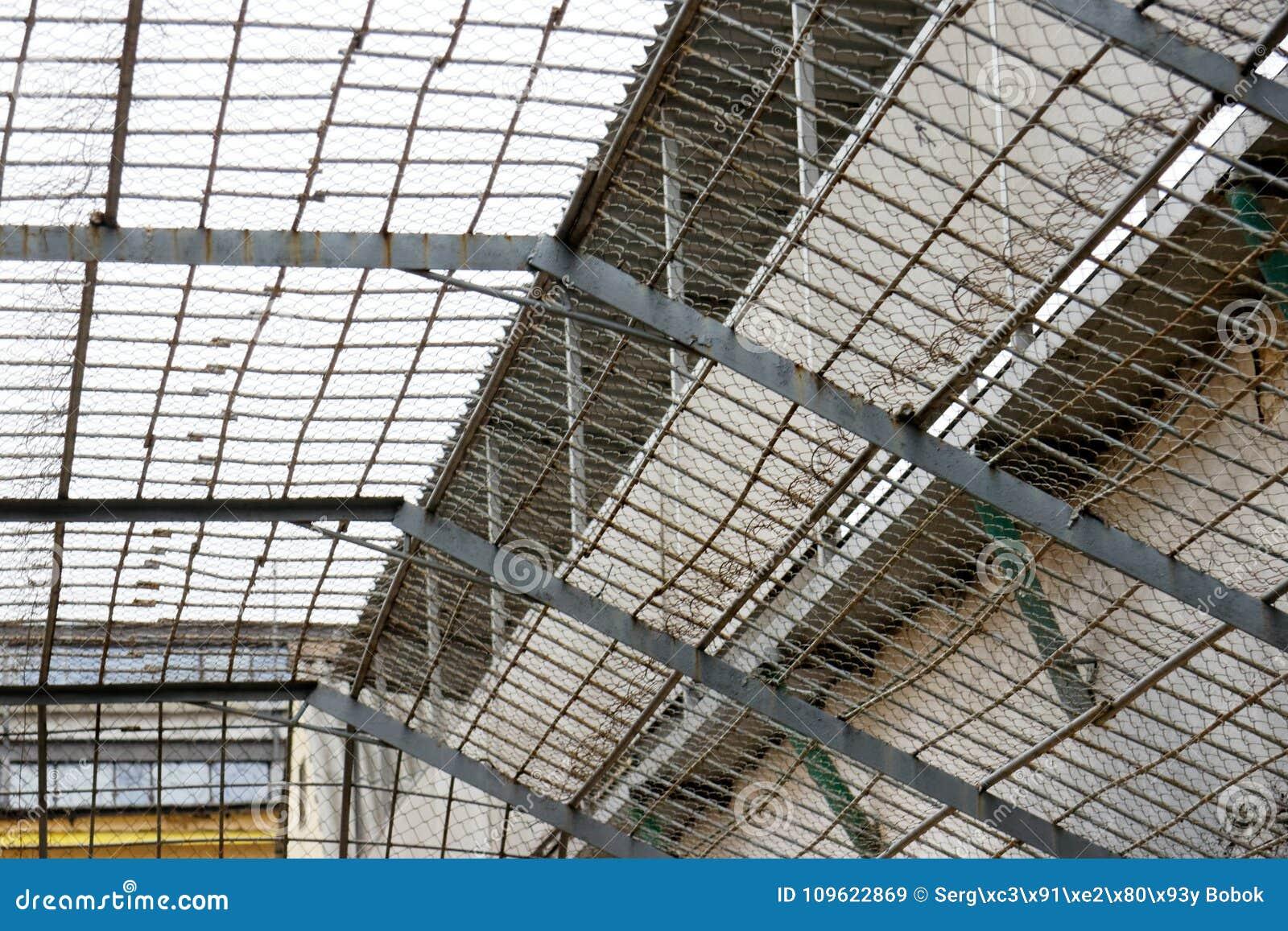 Rooster in de gevangenis