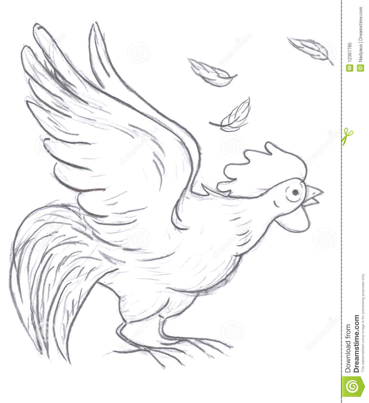 Rooster Sketch Stock Illustration Illustration Of